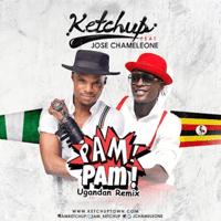 Pam Pam (Ugandan Remix) [feat. Jose Chameleone] Ketchup MP3