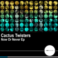Now Or Never Cactus Twisters
