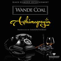 Ashimapeyin Wande Coal