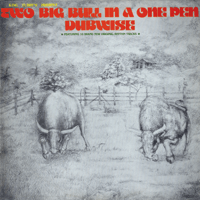 Two Big Bull In a One Pen (Dubwise Version) King Tubby MP3