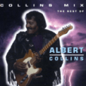 Free Download Albert Collins If Trouble Was Money Mp3