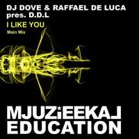I Like You DDL MP3