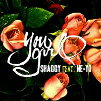You Girl (feat. Ne-Yo) Shaggy