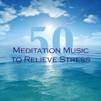 Stress Reliever - Deep Sleep Music No Stress Ensemble