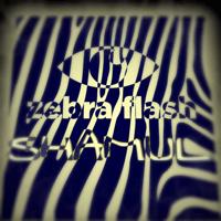 Zebra Flash Shamul song