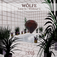 Love Is Wolfe MP3