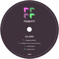 Smother (feat. Marcus Intalex & Bricktop) Calibre MP3