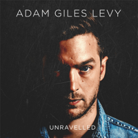 Looking Too Closely Adam Giles Levy MP3