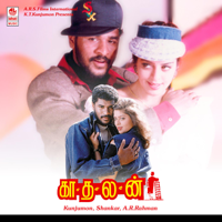 Ennavale Adi Ennavale Unni Krishnan MP3