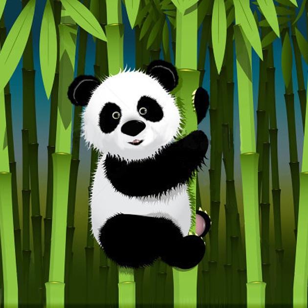 Cute Baby Pets Live Wallpaper Download Panda Wallpapers Panda Pictures Amp Panda Images On The