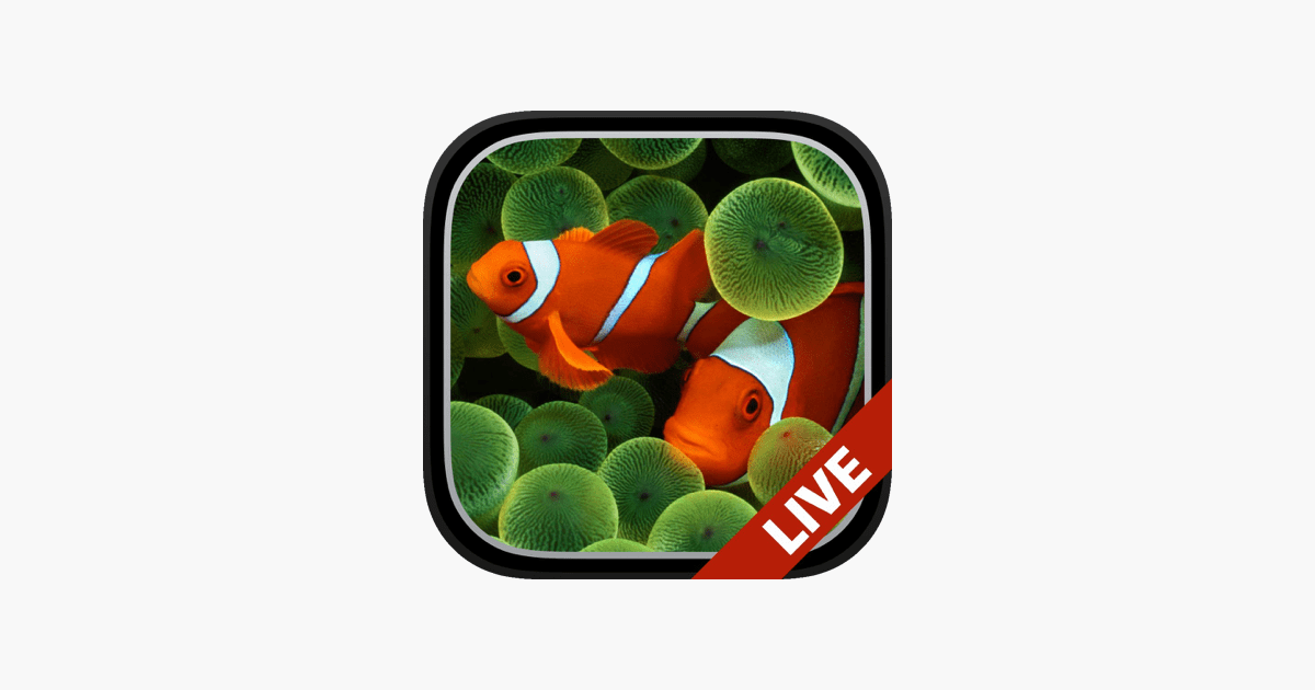 Apple Clownfish Wallpaper Iphone X Aquarium Dynamic Wallpapers On The App Store