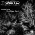 Free Download Tiësto In the Dark (feat. Christian Burns) [First State Extended Remix] Mp3