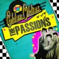 Free Download The Passions This Is My Love Mp3