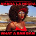 Free Download Amara La Negra What a Bam Bam Mp3