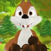 NetSummit Enterprises, Inc. - Super Squirrel Nut Grabber Pro アートワーク