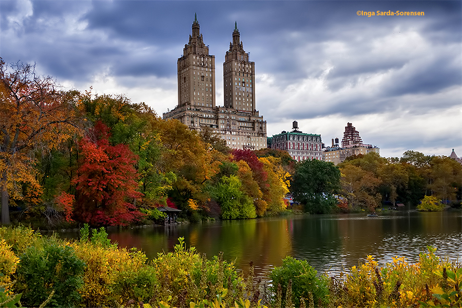 Fall In Central Park Wallpaper Autumn Inga S Angle