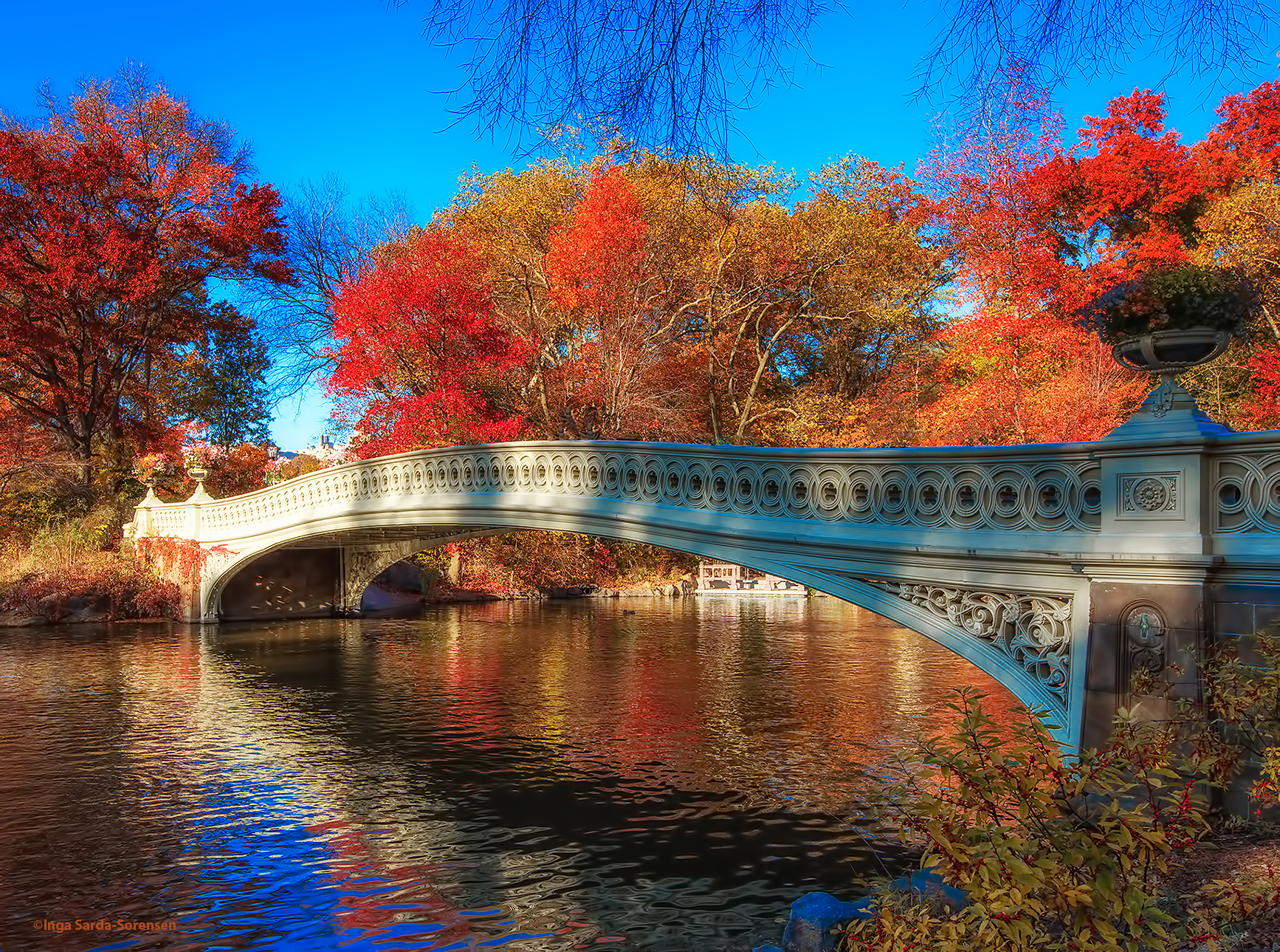 Free Wallpaper Fall 1600x900 Tp Central Park Bow Bridge Nyc Nov 2016 Inga S Angle