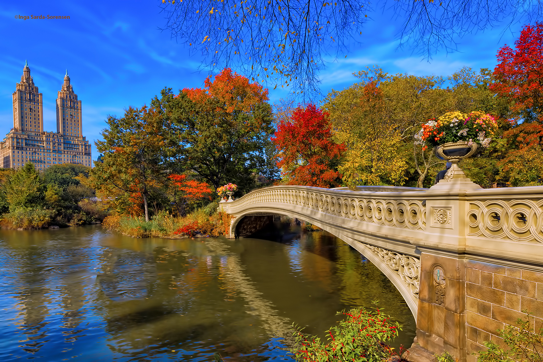 Fall Foliage Desktop Wallpaper Gorgeous Fall Colors In Central Park Inga S Angle