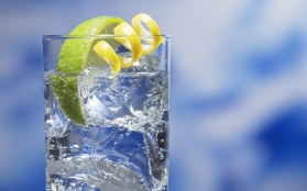 jw054-350a-cocktai-gin-and-tonic_1920x1200_69161