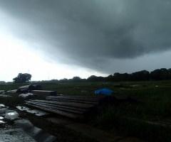 9月29日 早朝から重い雨雲が広がる。野外作業では天候の影響を受けるため、スタッフは常に最新の天気予報をチェックし、雨対策を怠らない。