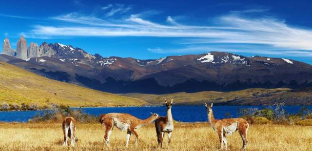 Chile (wildfrontierstravel.com)