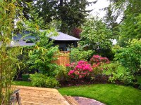 In Defense of the Back Yard: Urban Density and Urban Eden ...