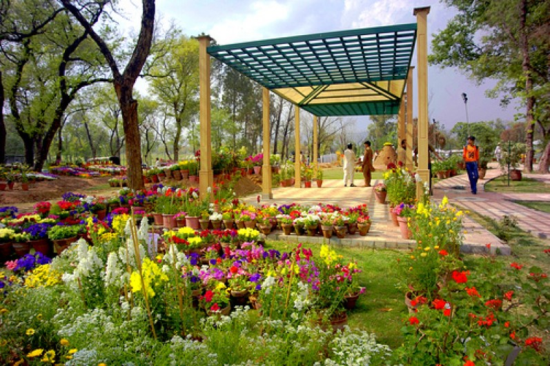 Rose and Jasmine garden in Islamabad