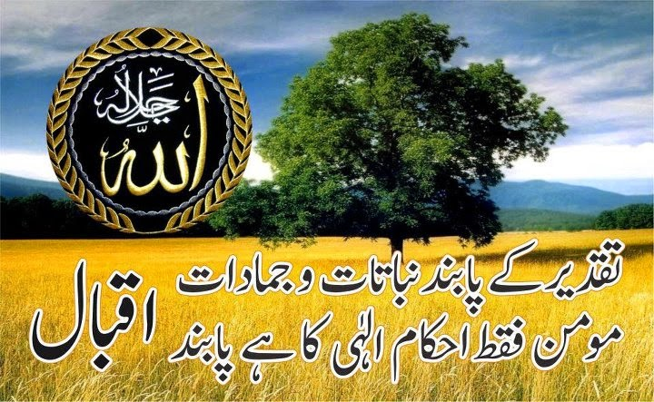 Girl And Boy Wallpaper With Quotes Best Islamic Poetry In Urdu Poetry Images Islamghar