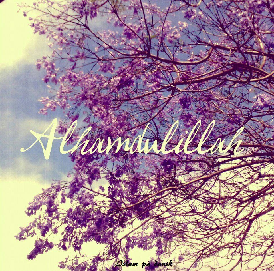 Sabr Quotes Wallpaper Alhamdulillah For My Mother Quotes Quotesgram
