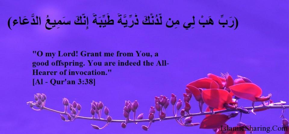 Jihad Quotes Wallpaper Islamic Sharing Islamic Photo Gallery Of Quranic Verses