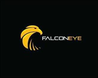 falcon-eye-solutions