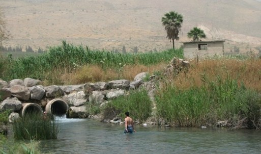 Nahal HaKibbutzim is at the northern tip of the Jordan Valley. Photo by Orly Yahalom