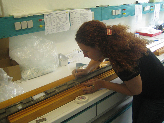 Dafna Langgut examining core samples from the Sea of Galilee