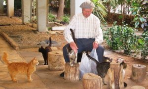 "Hesed (compassion/largesse/loving all): ""… an elderly man responding to feral cats hungry for love and food. He pets each one and portions out food for them."""