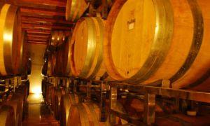 wine-barrel-israel-agriculture
