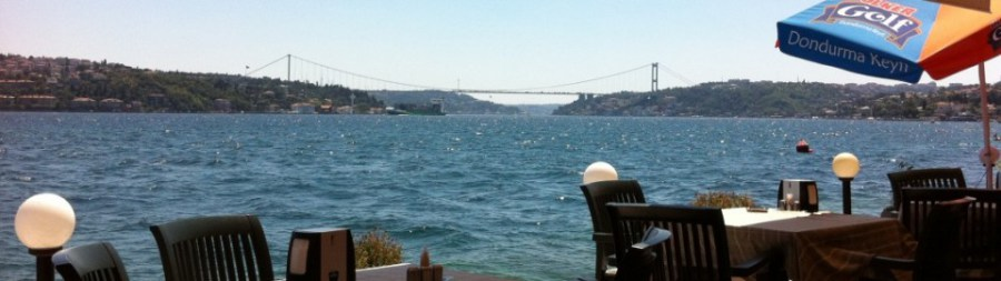 cropped-cropped-img_01518