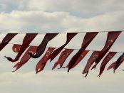 türkisches Flaggenmehr