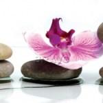Камешки с цветами