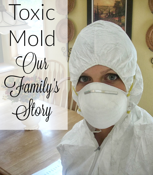 Our Toxic Mold Exposure - Timeline Of Events - It Takes Time