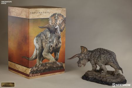 200362-triceratops-08