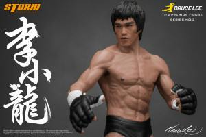 Bruce-Lee-Premium-Figure-No.-2-by-Storm-014