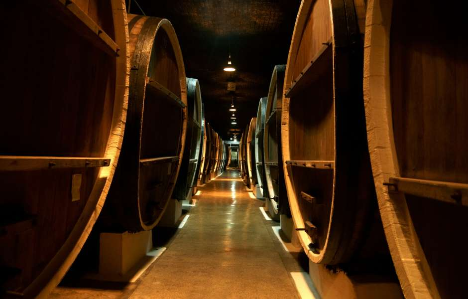 Which Wines You Should Taste In Tuscany