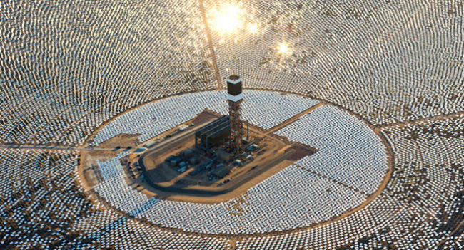 Крупнейшая солнечная электростанция является причиной гибели птиц