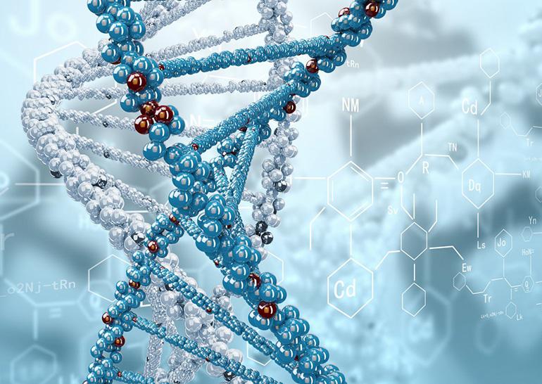В США признаны этичными клинические испытания ЭКО, когда ребёнок получает ДНК от трех родителей