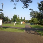 デイキャンするのであれば「稲城北緑地」がおすすめ!(神奈川県民、東京都民)