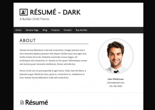 resume builder wordpress plugin professional resumes example online