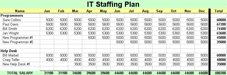 IT staffing plan ITLever™