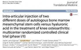 Artículo Dr. Mora sobre Células Madre y Artrosis