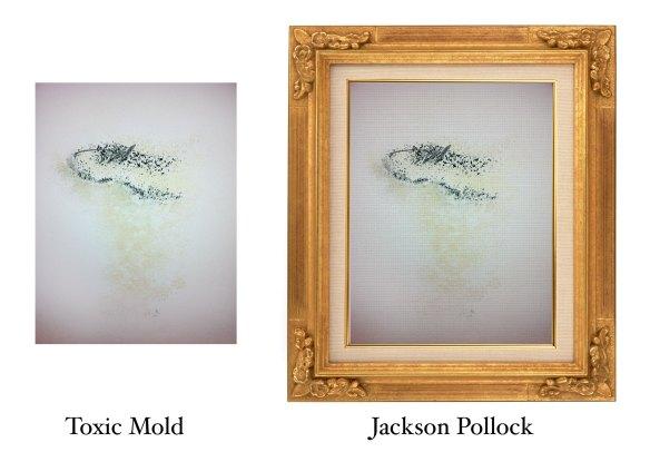 Toxic Mold or Jackson Pollock Painting