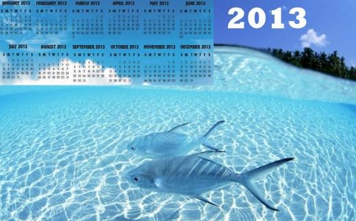 beautiful-2013-calendar-widescreen-high-definition-wallpaper